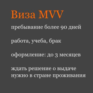 Виза MVV